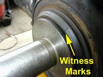 24-1_witness-marks_rgb
